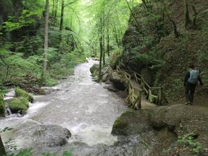 Ehrbachklamm